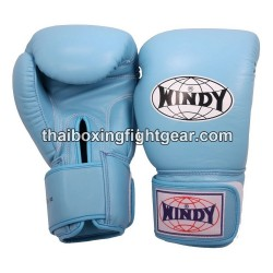 Windy Thaiboxing Gloves Sky Blue